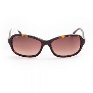 Calvin Klein 4290 Gloss Dark Havana Brown Gradient (4290 214)